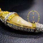 Suea -Tiger amulet ( VIP)